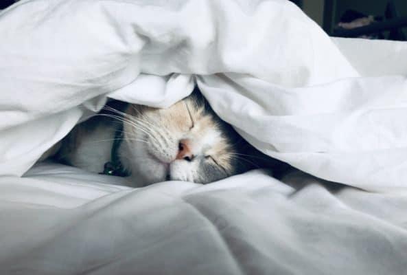 Mieux dormir avec la lithotherapie